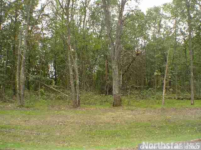Lot 13 blk 1 Riverwood Shores, Pillager, MN 56473