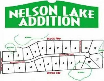 lot 6 blk 1 Nelson Lake Road, Pillager, MN 56473