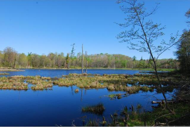 LOT 7 BLK 1 SW Rookery Drive, Brainerd, MN 56401