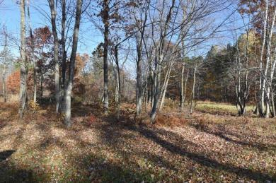 Lot7, Block1 Elk Horn Court, Merrifield, MN 56465