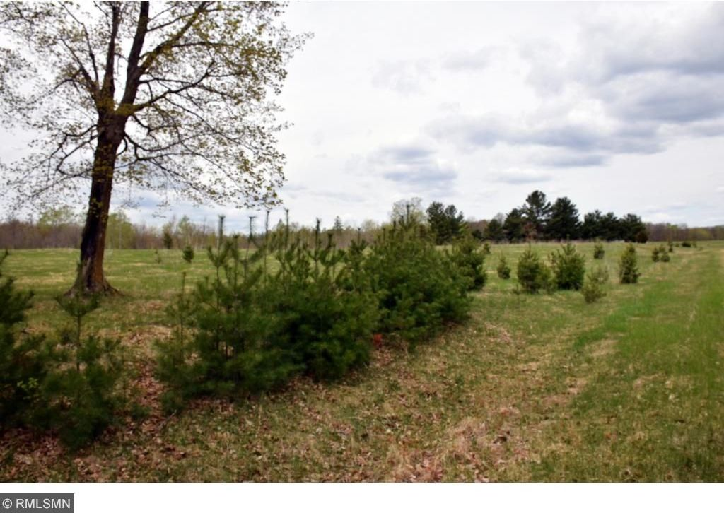 XXX 455th Place, Aitkin, MN 56431