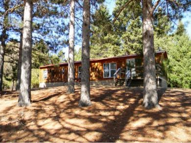 6443 Point Drive, Pine River, MN 56474