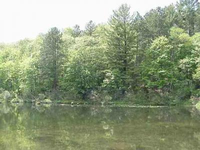 Photo of Lot 13 Pine Lake Rd, Iron River, WI 54847