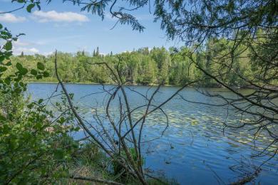 TBD Draper Road Ne, Thunder Lake Twp, MN 56672