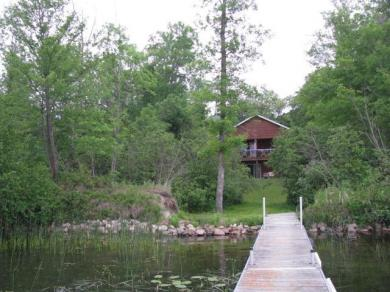 344 NW Norman Point Road, Woodrow Twp, MN 56655