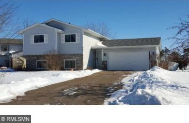 9683 S Hamlet Avenue, Cottage Grove, MN 55016
