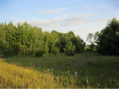 Lot 7 Blk 3 NW 275th Avenue, Zimmerman, MN 55398
