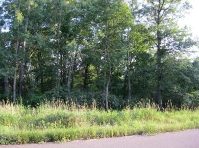 Lot 3 Blk 2 NW 276th Avenue, Zimmerman, MN 55398