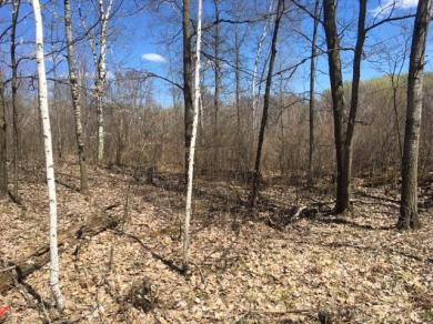 Lot5&6 Blk 1 Wilderness Park Estates 4th Ad, Meadowbrook Twp, MN 56466
