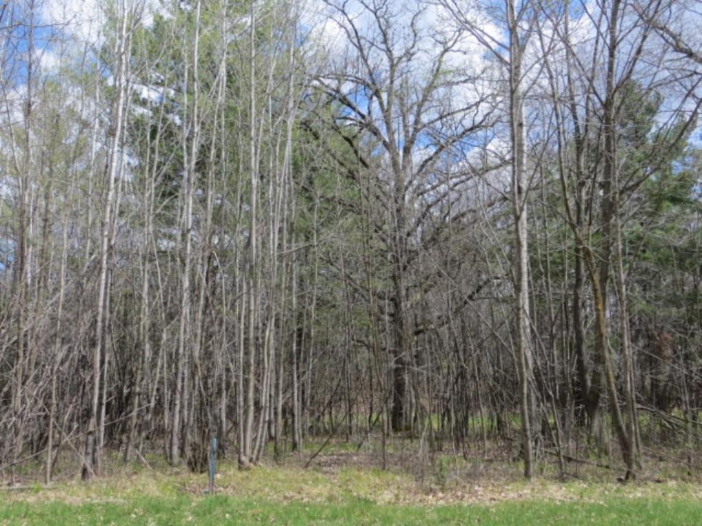 TBD Blackrock Road, Aitkin, MN 56431