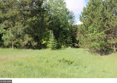 TBD County Rd 261 40th Ave Sw, Pine River, MN 56474