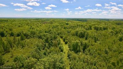 Photo of 63328 Kingsdale Road, New Dosey Twp, MN 55072