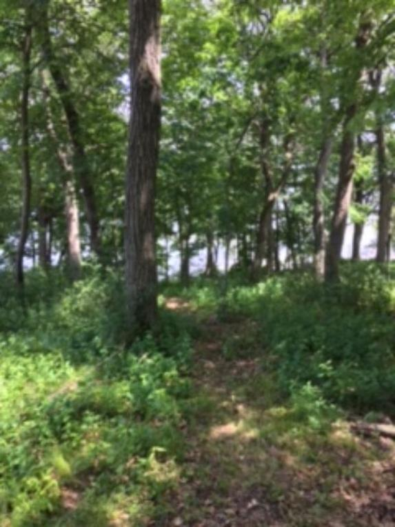14xxxx N Oldfield Road, May Twp, MN 55082