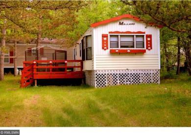 6657 Redleaf Court, Breezy Point, MN 56472