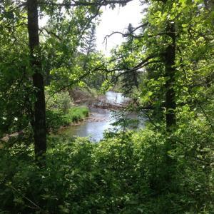 XXX Rivers Edge Trail, Pine River, MN 56474