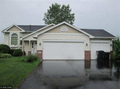 15325 NW Linnet Street, Andover, MN 55304