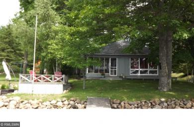 16233 Brighton Point Road, Bay Lake Twp, MN 56444