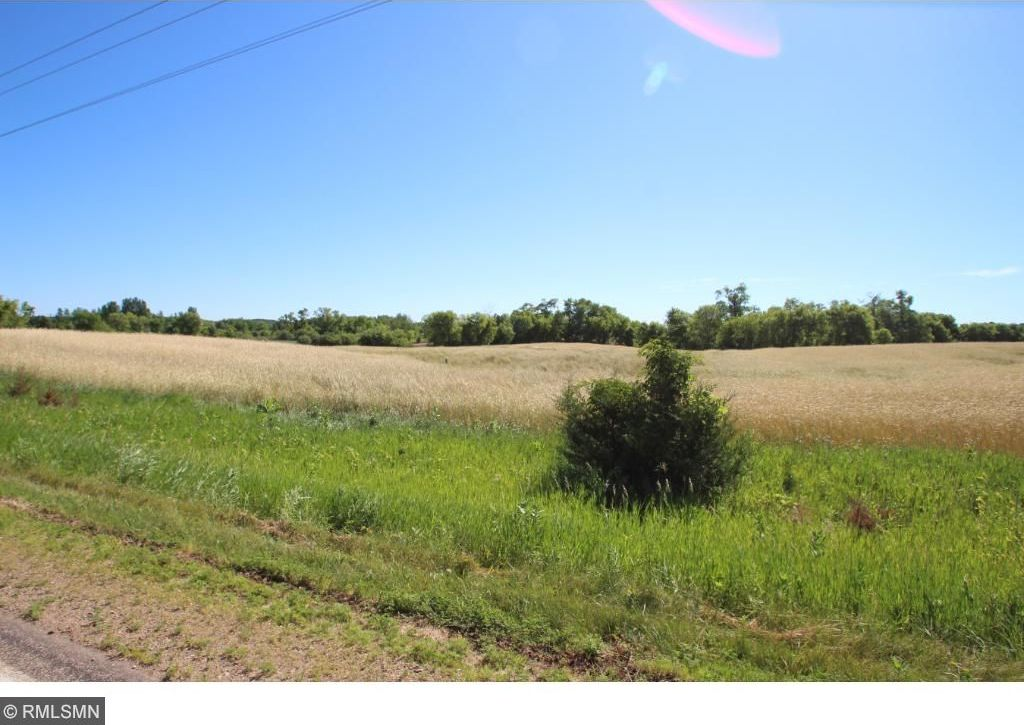 Lot 1 Blk 4 NW Ireland Avenue, Annandale, MN 55302