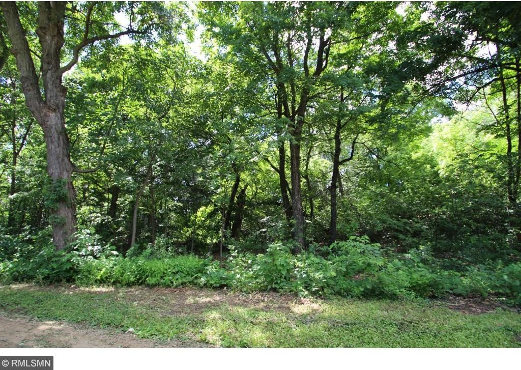 Lot 17 Blk 2 NW Hoyer Avenue, Annandale, MN 55302