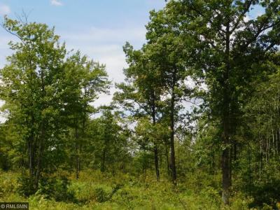 Photo of XX 270th Avenue, Brook Park, MN 55007