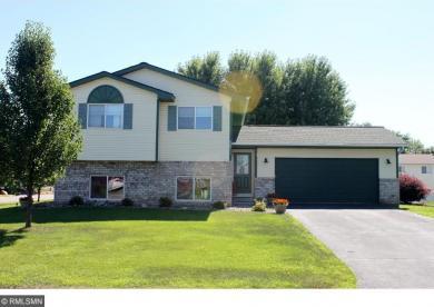 9611 S Hamlet Avenue, Cottage Grove, MN 55016