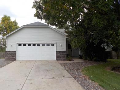 13746 NW Yellow Pine Street, Andover, MN 55304