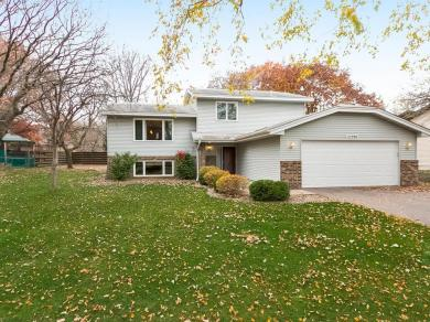 12390 NW Larch Street, Coon Rapids, MN 55448
