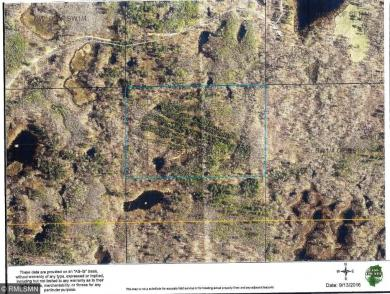 TBD Tree Farm Road, Outing, MN 56662