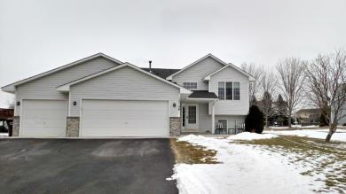 13756 Widgeon Lane, Rogers, MN 55374