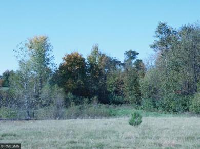 933 NW Whiskey Road, Isanti, MN 55040