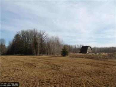 29265 State Highway 210, Fleming Twp, MN 56431