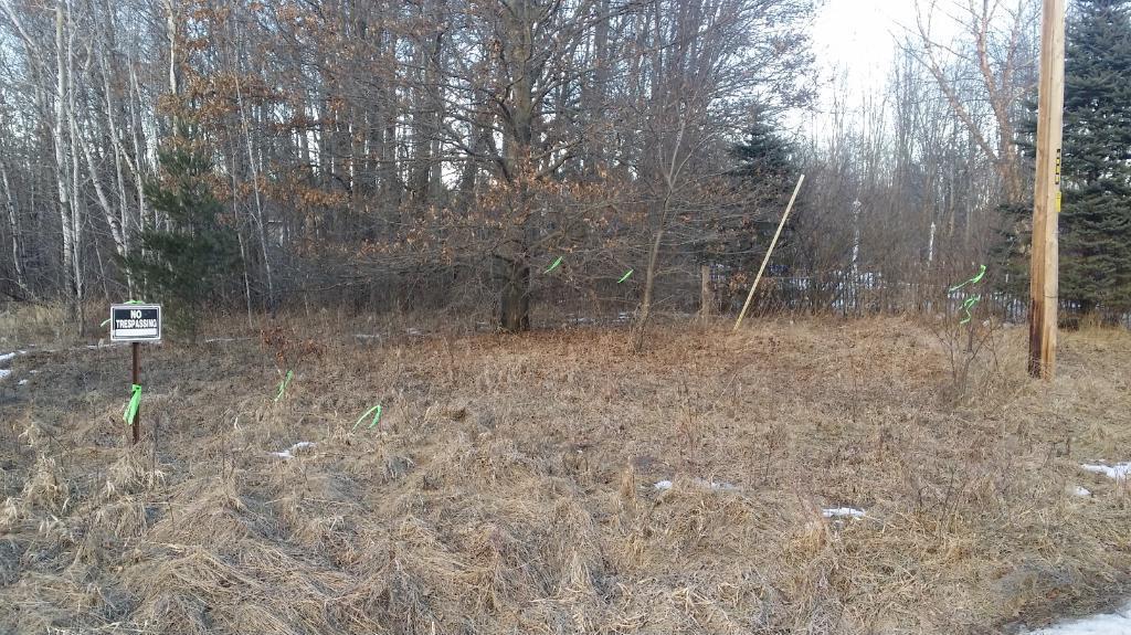 xxx W Camp Three Road, Columbus, MN 55025