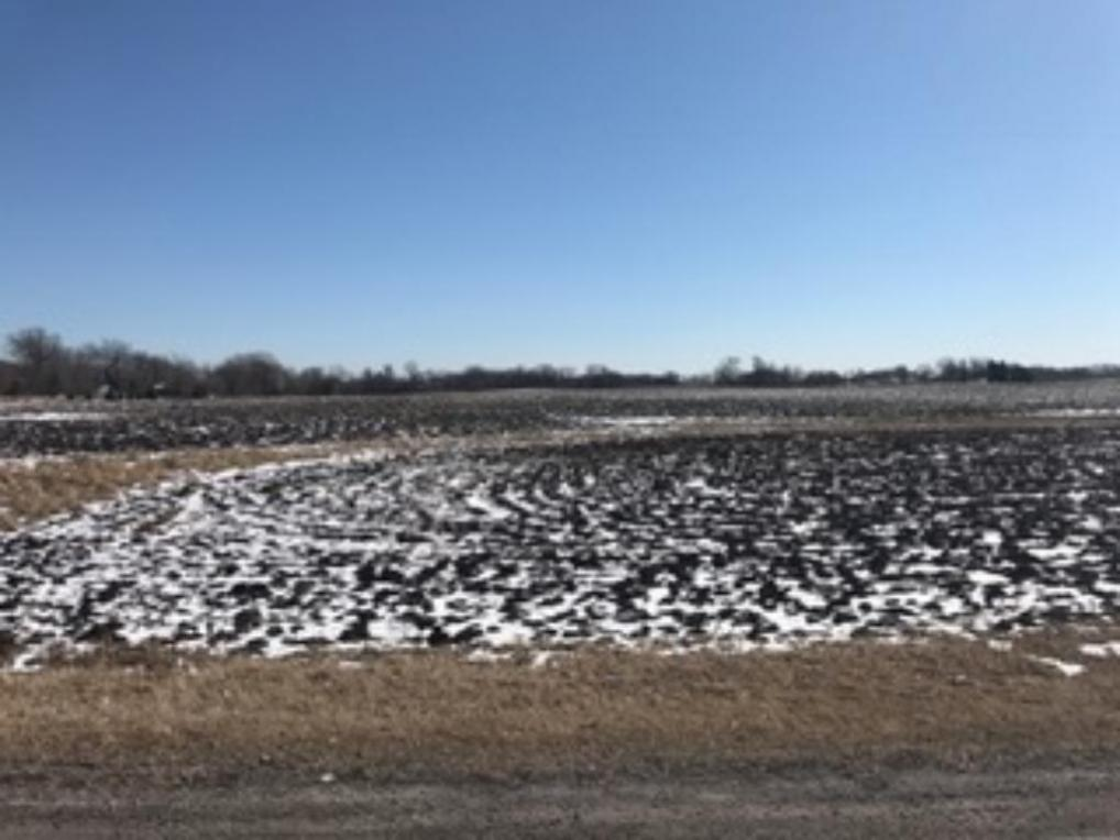 000 Unassigned, Rogers, MN 55374