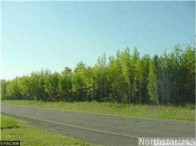 TBD County Road 2, Brainerd, MN 56401