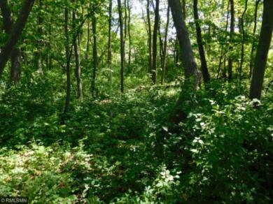 Lot 4 NW Wahtomin Trail, Alexandria, MN 56308