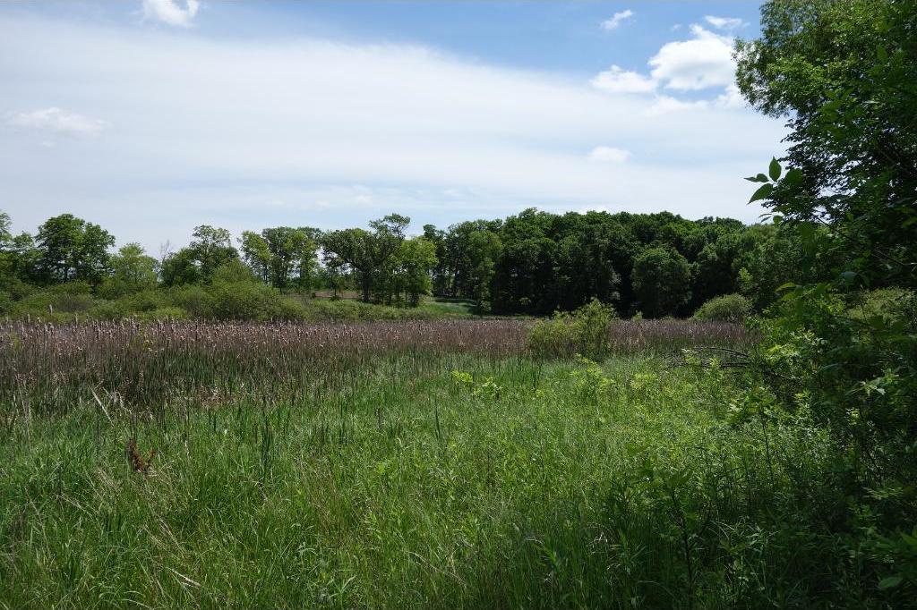 5.25 acre Lot At Pinto And Hackemore, Medina, MN 55340