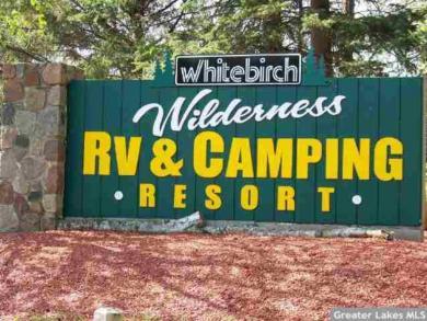 30850 Whitebirch Way, Breezy Point, MN 56472