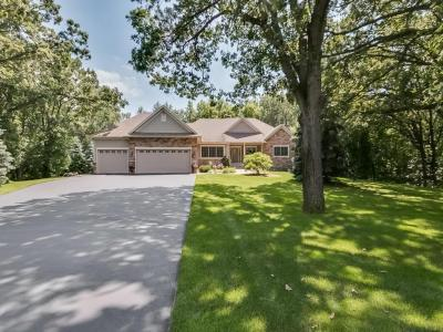 Photo of 3328 NW 156th Avenue, Andover, MN 55304