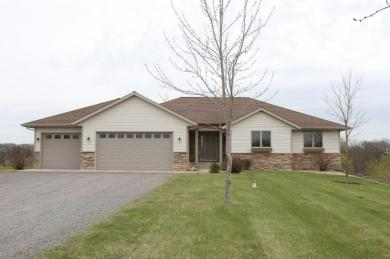 14688 Hidden River Drive, South Haven, MN 55382