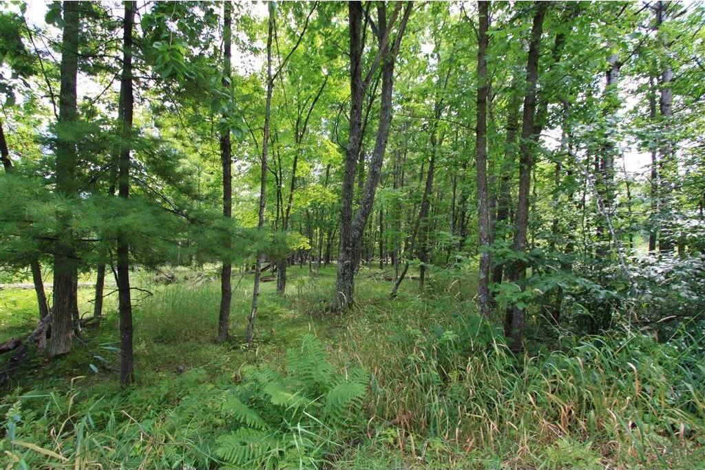 Tract N Peony Avenue, Aitkin, MN 56431