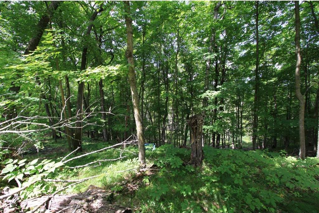 Tract F Peony Avenue, Aitkin, MN 56431