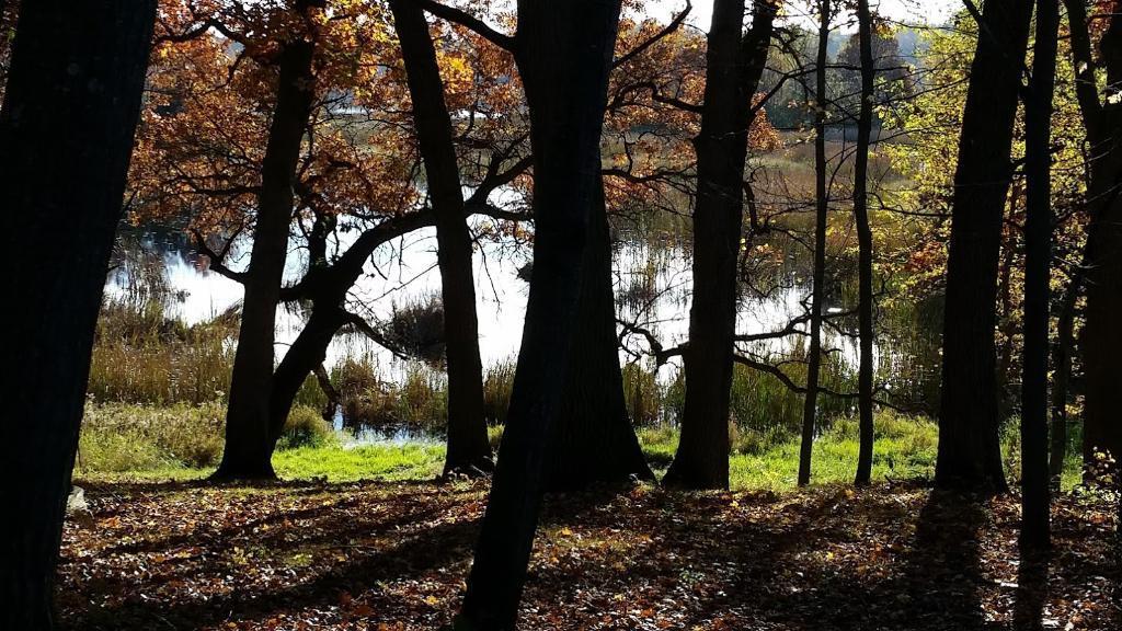223xx Olinda Trail, Scandia, MN 55073