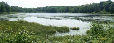 Photo of Lot 5 Allison Ln, Iron River, WI 54847