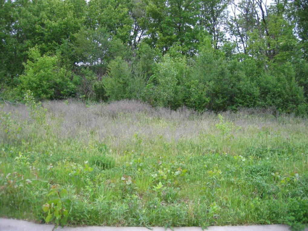 Lot 2 Blk 1 Cheri Court Court, White Bear Lake, MN 55110