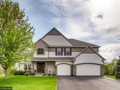 Photo of 6290 S Hedgecroft Avenue, Cottage Grove, MN 55016