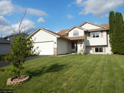 Photo of 7453 S 96th Street, Cottage Grove, MN 55016
