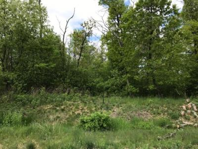 Photo of Lot 55 24th Ave, Eau Claire, WI 54703
