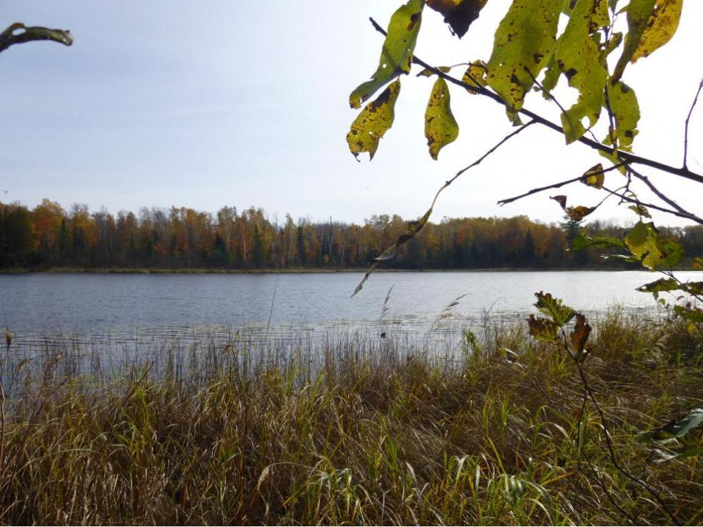 TBD 640th Lane, Cornish Twp, MN 55752