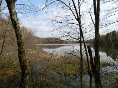 Photo of 00 West Bass Lake Rd, Iron River Twp, WI 54847