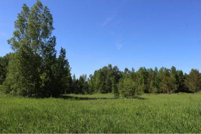 Photo of 33671 State Highway 48, Arlone Twp, MN 55037